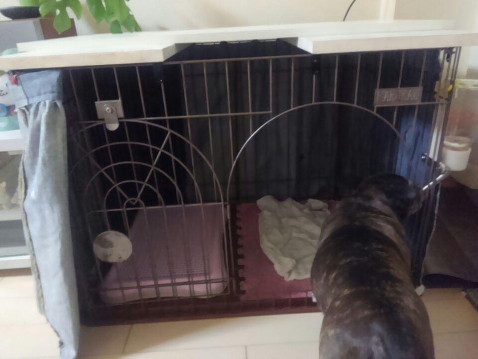 犬のケージ用カバー前面を開けたところ