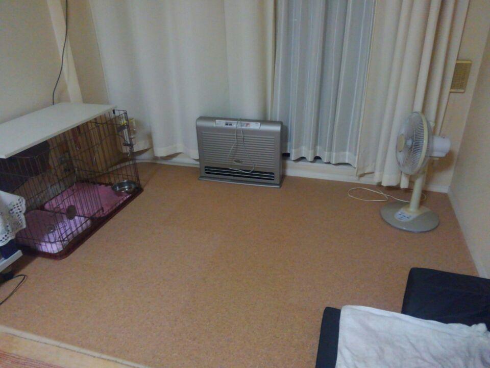 【愛犬の老後を考える】足腰が弱くなるからこそ、滑らない床材を取り入れました!6