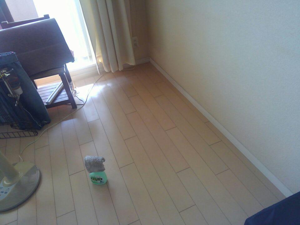 【愛犬の老後を考える】足腰が弱くなるからこそ、滑らない床材を取り入れました!1