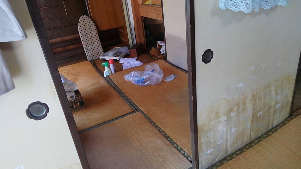 【台風19号】水害、床上浸水後の家屋・家財の消毒方法と感染症対策!体験のまとめ6