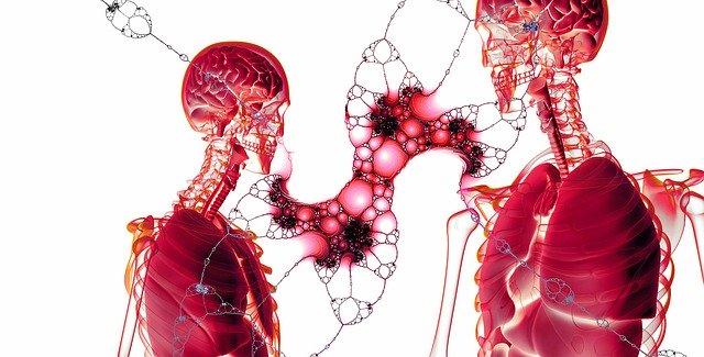 乳がん、顎骨腫瘍疑い、歯周病、慢性蕁麻疹、湿疹、慢性炎症でつながる病気たち