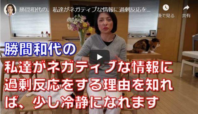 勝間和代さんの動画 情報に過剰反応する理由を知って冷静さを取り戻す!