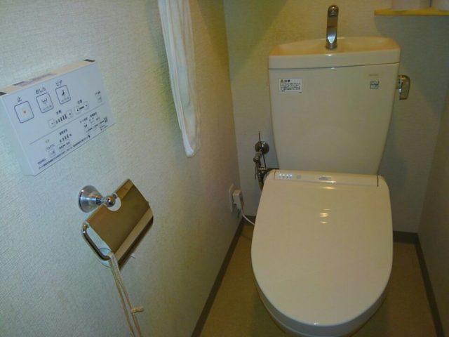 外出自粛でトイレ掃除!自宅ひとり時間の過ごし方「便器の黄ばみと黒ずみが気になってた!」