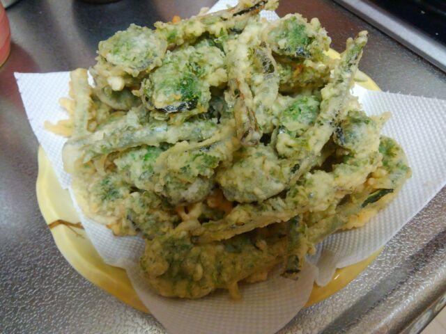 新型コロナをぶっ飛ばせ!美味しい旬の食材から栄養と免疫をGETする!!「こごみは天ぷらに、山菜のメリット」と、まとめ