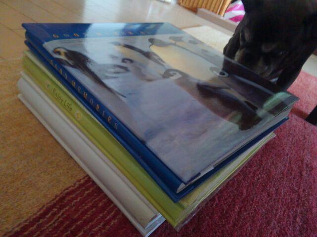 アルバム整理 離婚後元夫の写真は処分?子供の立場を尊重?「都度購入したアルバムはバラバラ。これらを時系列にまとめたい」
