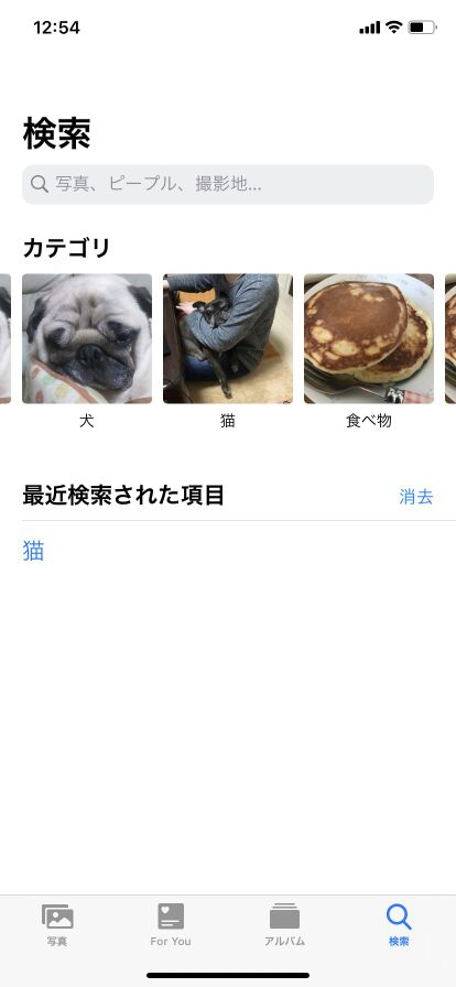 iPhone画像保存先の謎 犬と猫、見た目の違いってどこですか?1