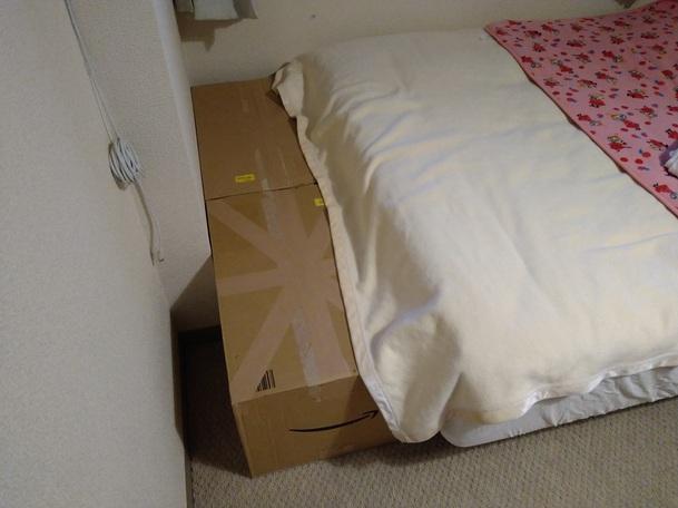 ベッド足元のデッドスペースに段ボールを入れてみた
