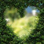 心の中の整理整頓。自分の気持ちを見つめることの大切さ。自分の中のわかる気持ちを大事にすればいい!