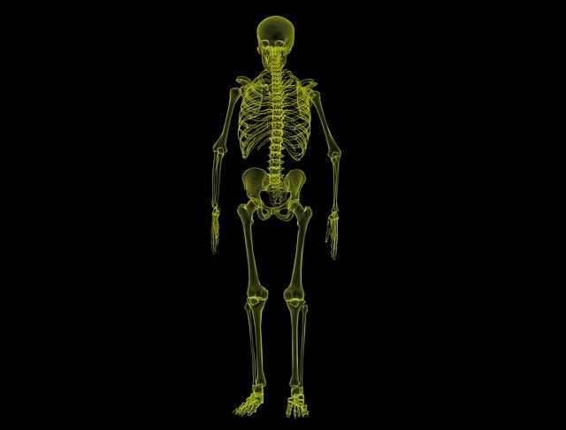乳がん、パジェット病の術前検査。RI(核医学)検査・骨シンチグラフィーで骨転移を調べた!